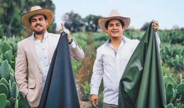 "Two Men Created ""Leather"" From Cactus to Save Animals and the Environment."